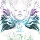 7 Facet Seichim Reiki aka Renegade Raiki