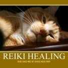 ~~ REIKI ~~ Amazonite Energy REIKI ONLY NO STONES