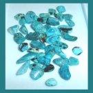 23.33ctw Lot of Mini Blue DALMATIAN and LEOPARD JASPER Tumbled and Polished Natural Stones