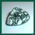 44.90ct TREE AGATE Tumbled and Polished Natural Loose Gemstone