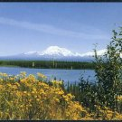 1997 Alaska Flowers Scenery Postcard Set (of 4), NEW