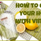 Vinegar For Cleaning eBook on CD Printable