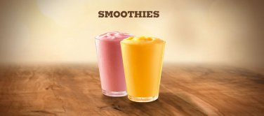 204 SMOOTHIE RECIPES eBook on CD Printable