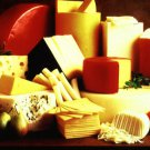 250 Cheese Recipes Cookbook eBook on CD Printable