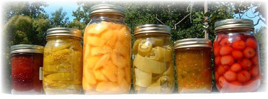 281 HOME CANNING Recipes eBook on CD Printable  - Jams Jellies Preserves
