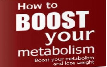 Boost Your Metabolism - Burn Fat and Lose Weight eBook on CD Printable