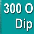 300+ DIP RECIPES eBook on CD Printable - Delicious