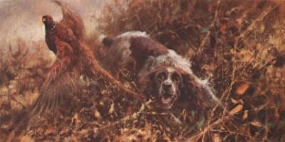 Spaniel and Pheasant