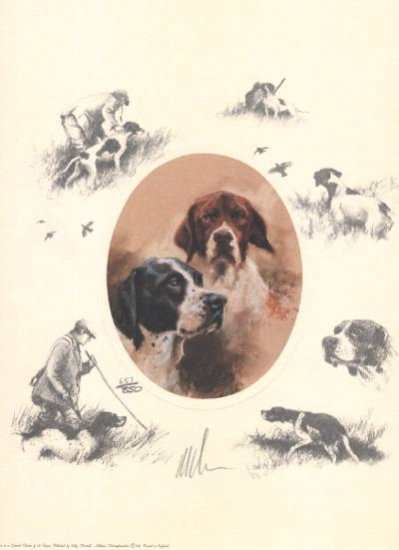 Oval English Pointer