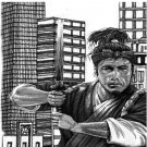 VD2617A  Street Smart Samurai Cane Self Defense Techniques #2 DVD Dana Abbott, Mark Shuey