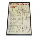 GP0078A  Bubishi Chinese Pressure Points dim mak martial art Display Wall Plaque 11x17