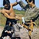 VO1830A  The Two Cavaliers DVD kung fu martial arts action Jimmy Wang Yu, Chan Sing