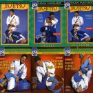 VD5154P  Rigan Machado Brazilian Jiu Jitsu 6 DVD Set Essence & Secrets Half Guard mma