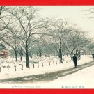 Antique JAPAN Japanese Hand Tinted Colored Postcard  Yokohama Park Snow Scene #EC55