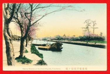 Antique JAPAN Japanese Hand Tinted Colored Postcard  Negishi Yokohama Cherry Blossoms #EC57