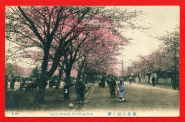 Antique JAPAN Japanese Hand Tinted Colored Postcard  Yokohama Park Cherry Blossoms People #EC58