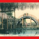Antique JAPAN Japanese Hand Tinted Colored Postcard  Kameido Temple Tokyo Bridge Wisteria #EC62