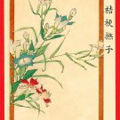 JAPAN Japanese Art Postcard KOKKEI SHINBUN Bellflower Pink Flower  #EAK58