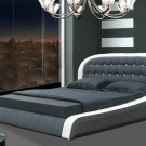 Modern Denmark leather Platform Bed (Queen size)