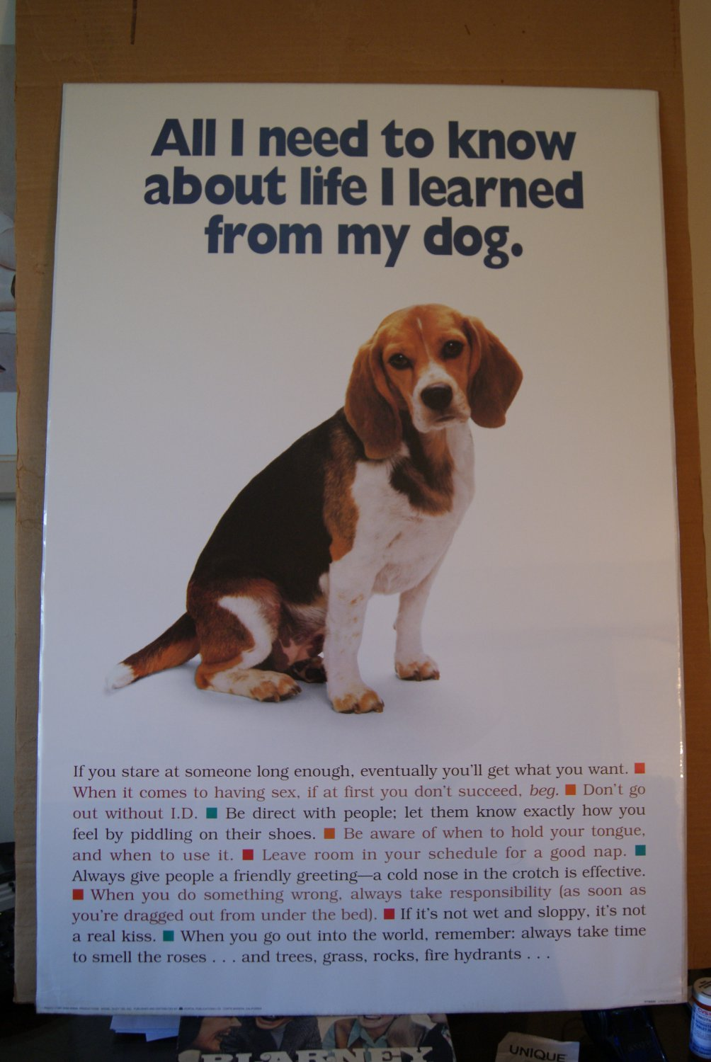 All I need to know about life I learned from my dog poster
