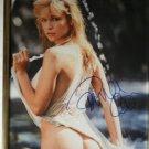 Pamela Anderson autographed photograph