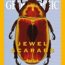 National Geographic February 2001 Jewel Scarabs