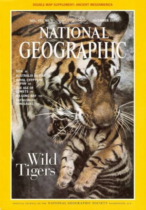 National Geographic December 1997 Wild Tigers