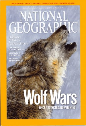 National Geographic March 2010- Wolf Wars Once Protected, Now Hunted