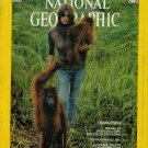 National Geographic October 1975-Orangutans