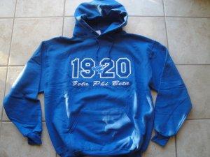 Zeta Phi Beta-hoodie