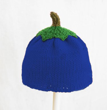 Blueberry Hat for Boys, Blue Crochet / Knit Beanie, send size baby - adult
