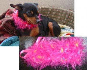 Fuzzy Diva Dog Collar Custom Made (xsm)