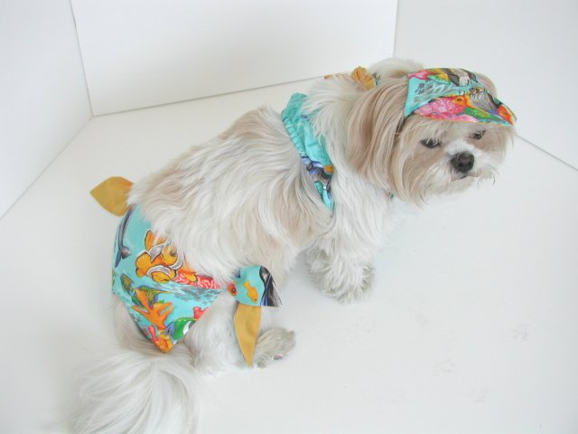 Salt Water Dog Bikini XXXsm-Small
