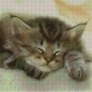 Counted Cross Stitch Kit - SLEEPING CAT