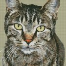 Counted Cross Stitch Kit - CAT