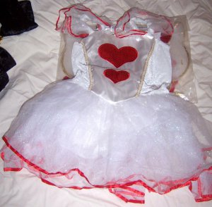 Girls Valentine Fairy Halloween Costume or Dressup SZ Med 5/6