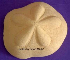 SAND DOLLAR OOAK by Mother Nature! SILICONE Candle Soap Resin Plaster Cement MOLD
