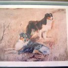 Australian Shepherd #1 Dog Notecards Envelopes Set - Maystead - NEW