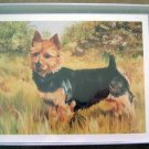 Australian Terrier #1 Dog Notecards Envelopes Set - Maystead - NEW