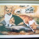 Welsh Corgi #6 Dog Notecards Envelopes Set - Maystead - NEW