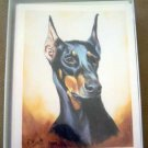 Doberman #3 Dog Notecards Envelopes Set - Maystead - NEW