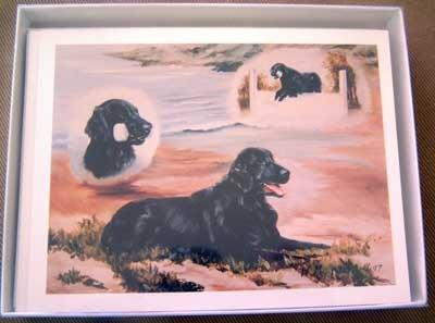 Flat Coated Retriever #1 Dog Notecards Envelopes Set - Maystead - NEW