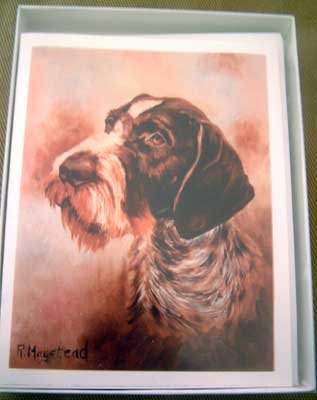 German Wirehair Pointer #1 Dog Notecards Envelopes Set - Maystead - NEW