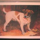 Jack Russell #8 Dog Notecards Envelopes Set - Maystead - NEW