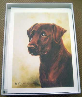 Labrador Retriever LAB #10 Dog Notecards Envelopes Set - Maystead - NEW