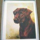 Labrador Retriever LAB #10 Dog Notecards Envelopes Set - Maystead - NEW