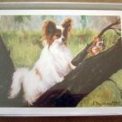 Papillion #3 Dog Notecards Envelopes Set - Maystead - NEW