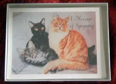 Cat Sympathy Notecards Envelopes Set - Maystead - NEW