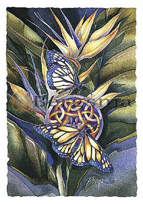 Jody BERGSMA Art Card Print : Wings of Transformation