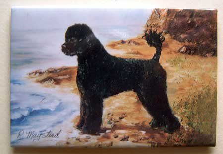 Dog Breed Full Backed Quality Magnet - Maystead - NEW PWD4